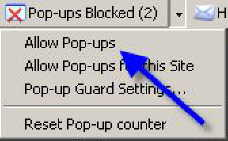 MSN Pop-Up Blocker Menu screen